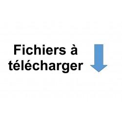 Fichiers Téléchargeables